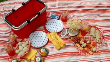 Picnic ideas for the family