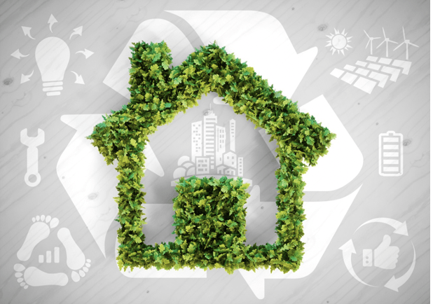 5 Ways to Live Sustainably