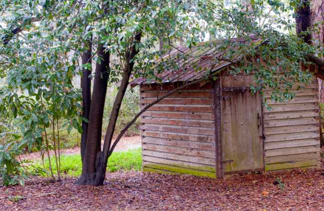 Things to Consider Before Removing Your Storage Shed
